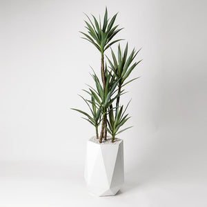 ′ YUCCA TREE IN WHITE RESIN PLANTER