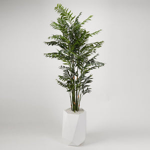 DELUXE BAMBOO TREE IN WHITE RESIN PLANTER