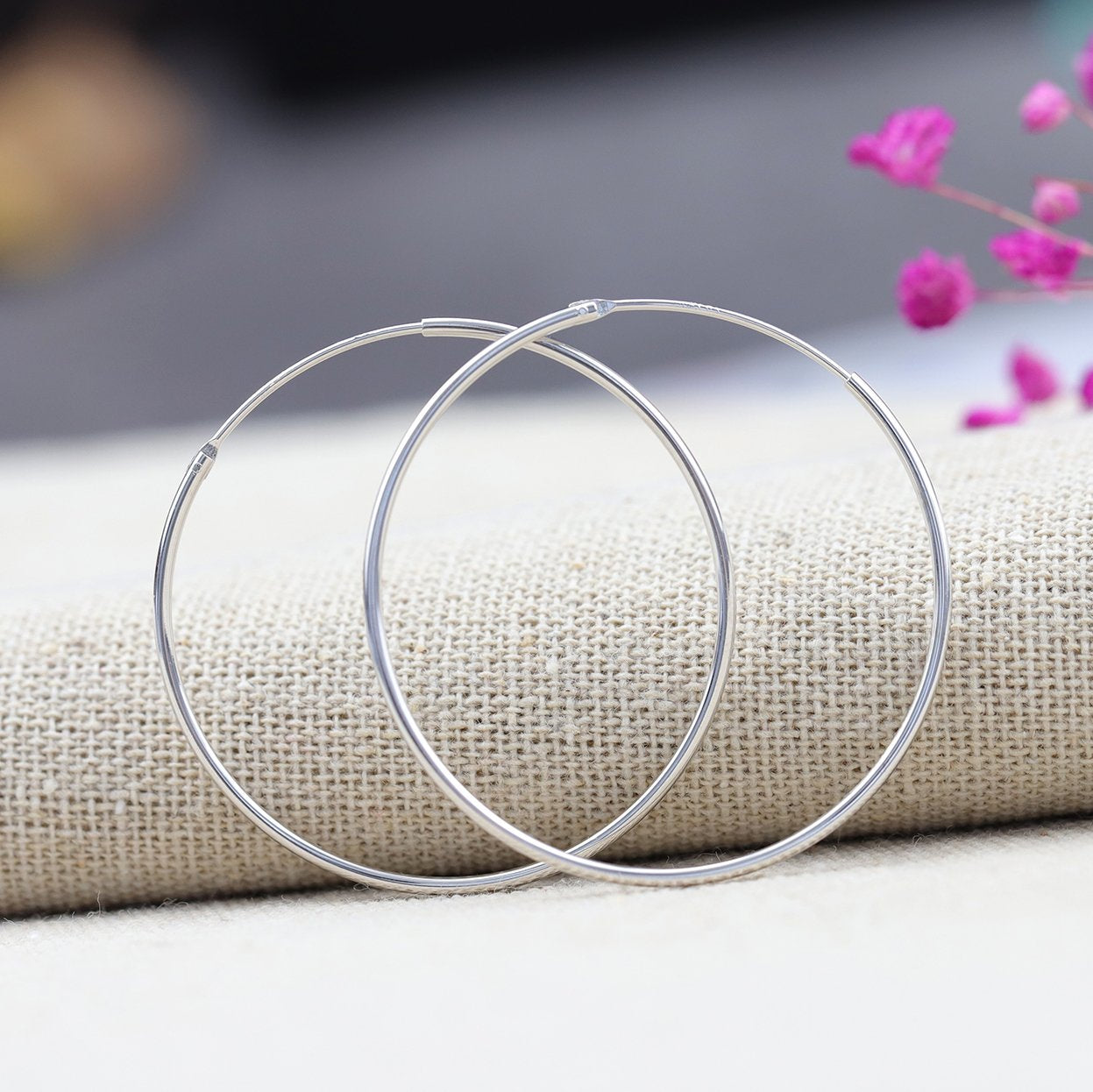 Chic Silver Big Loop Earrings