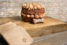 Spike (Doggolate & Honey Cake)