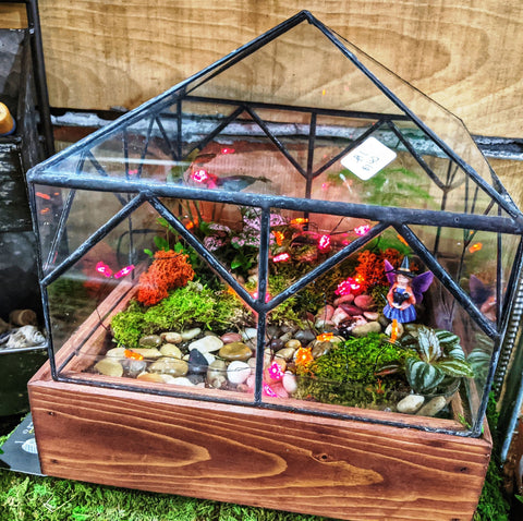 Handmade Terrariums made out of reclaimed wood and glass have just arrived at the houseplant boutique shop! Stop by Friday or Saturday 11-2  to build your own terrarium or message me for an appointment