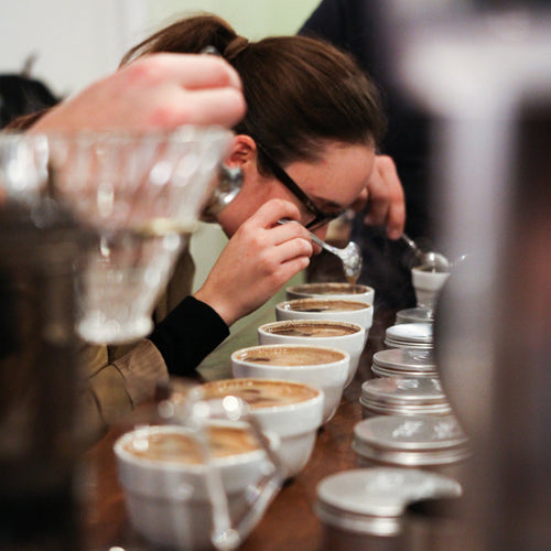PUBLIC CUPPING WORKSHOP