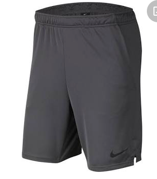 Nike Adult Team Dri-fit Anthracite Short