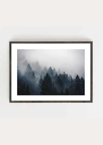 Forest Mountain Poster