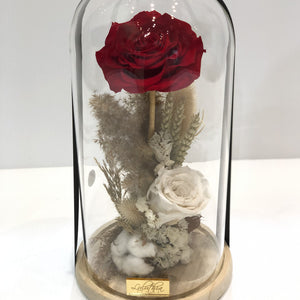 GLASS DOME - SINGLE RED ROSE