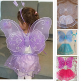 Butterfly Princess Costume Set