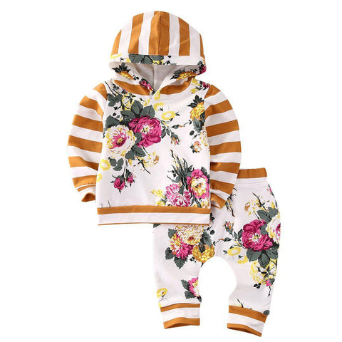 Floral Hooded Sweatshirt and Pants (Sizes 3 months-6)