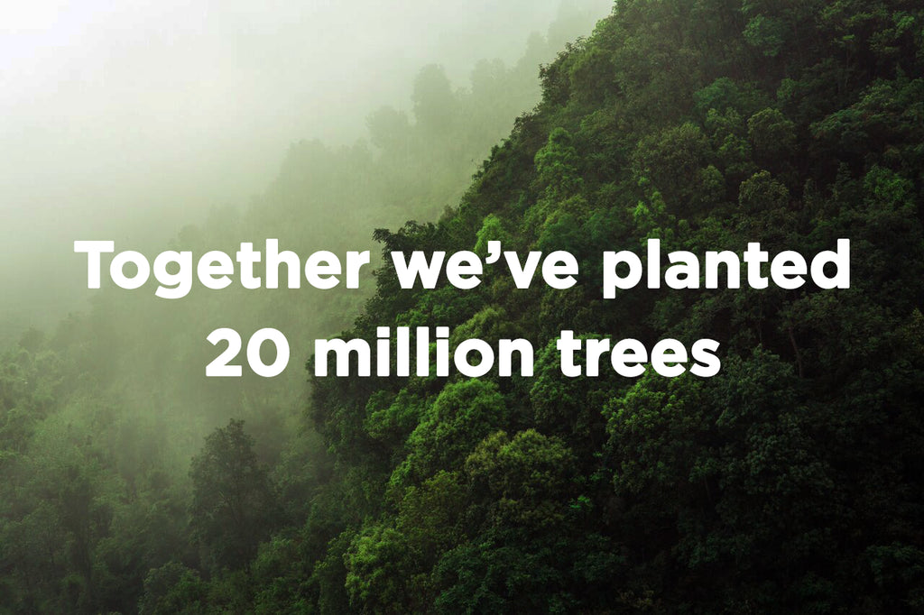 It's Arbor Day And Together We've Planted 20 Million Trees