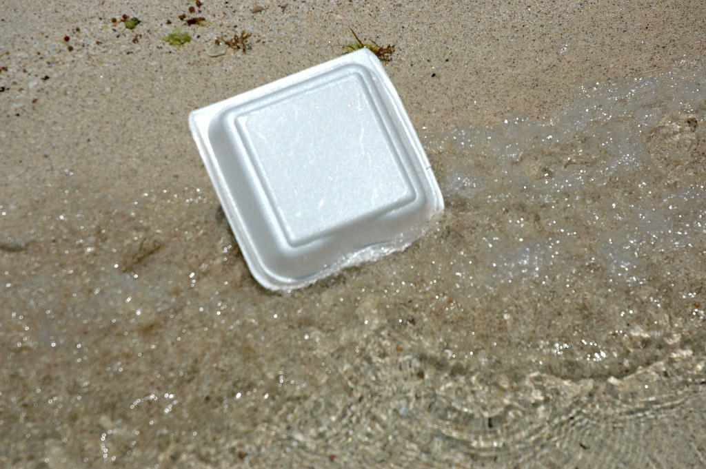 Maine Becomes The First U.S. State To Ban Styrofoam Plastic Food Containers