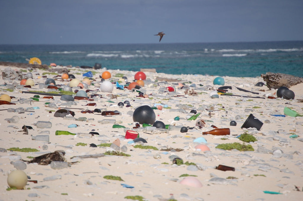 10 Facts About Plastic Pollution And 10 Things You Can Do About It