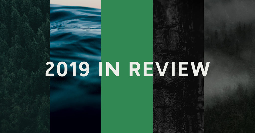 tentree's 2019 in review