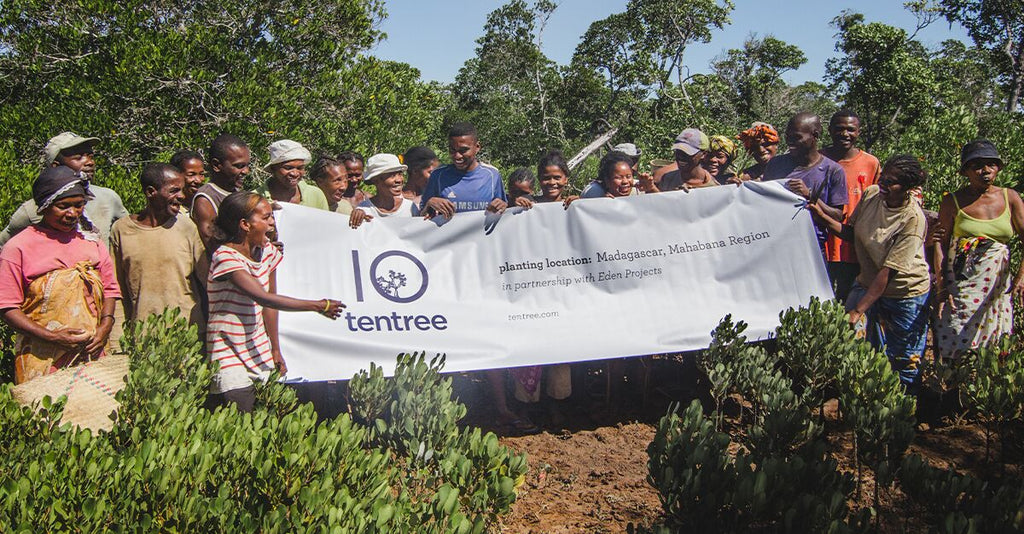 Taking Tees to Plant Trees: How You Support Communities in Madagascar