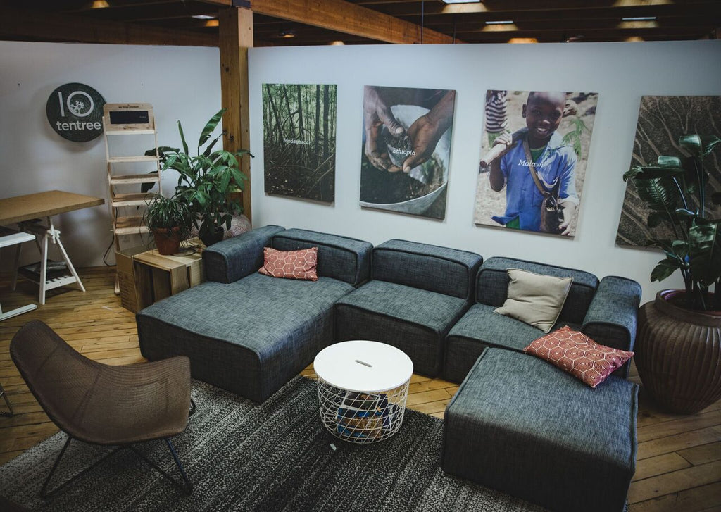 A Behind-The-Scenes Look At tentree's Sustainable Office Initiatives