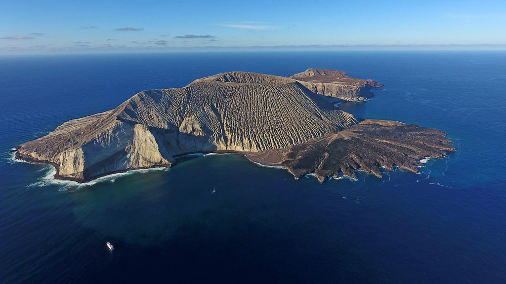 Mexico Establishes Huge Pacific Ocean Reserve Near