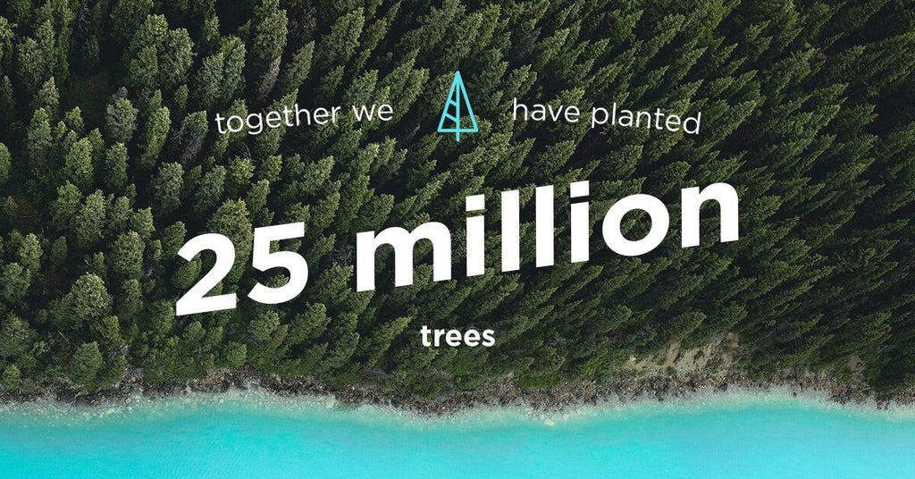 Thanks To You, We've Planted More Than 25 Million Trees!