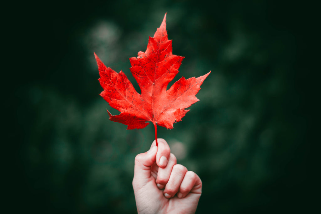 10 Of The Best Places To See The Leaves Change In Canada