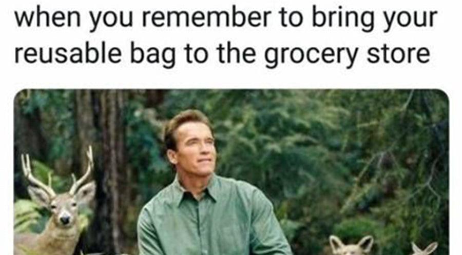 10 Of The Best Nature Memes On The Internet