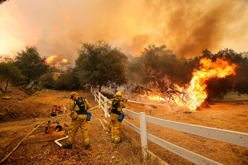 Here's How To Help Those Impacted By The California Fires