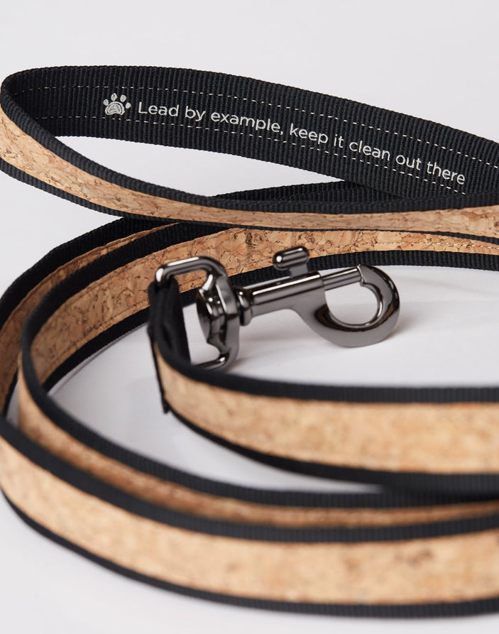 Image of product: cork leash