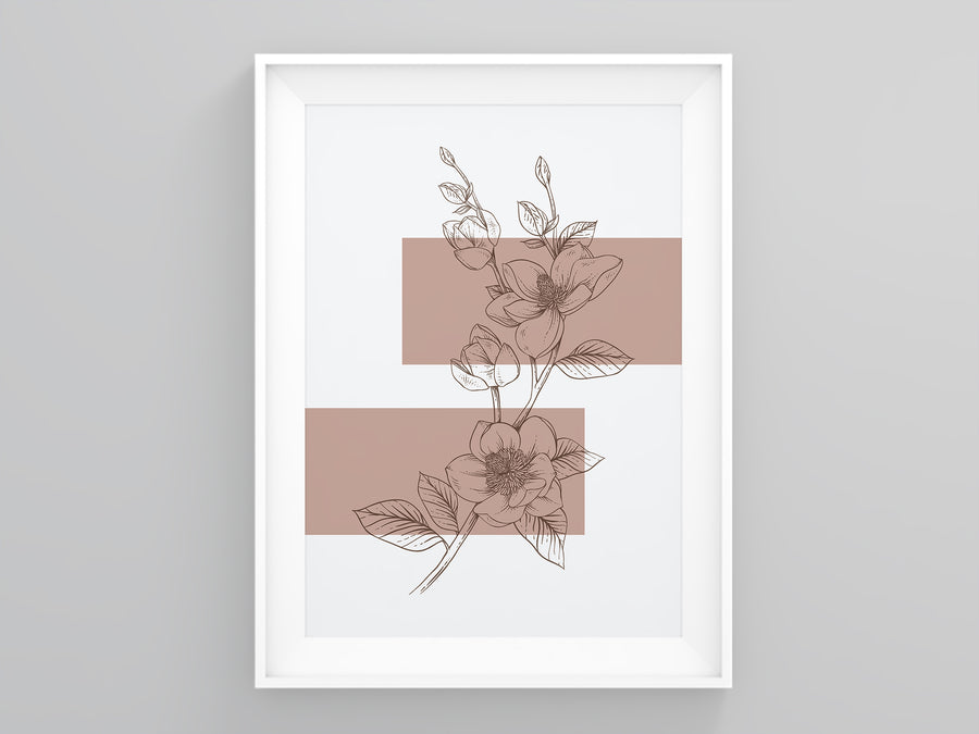 Anemone Outline Terracotta Print | Printers Mews