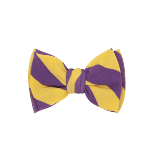 Baby Bling Classic Clip - Purple/Gold