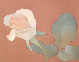 Mark Adams—Ivory Rose