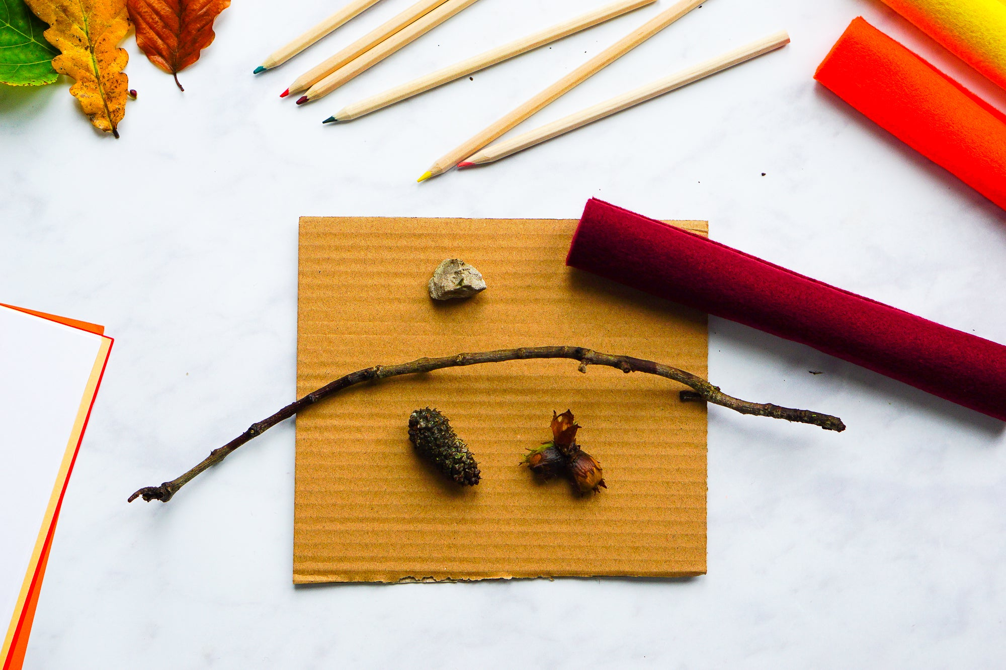 Set up an autumn nature and craft table to learn about the seasons