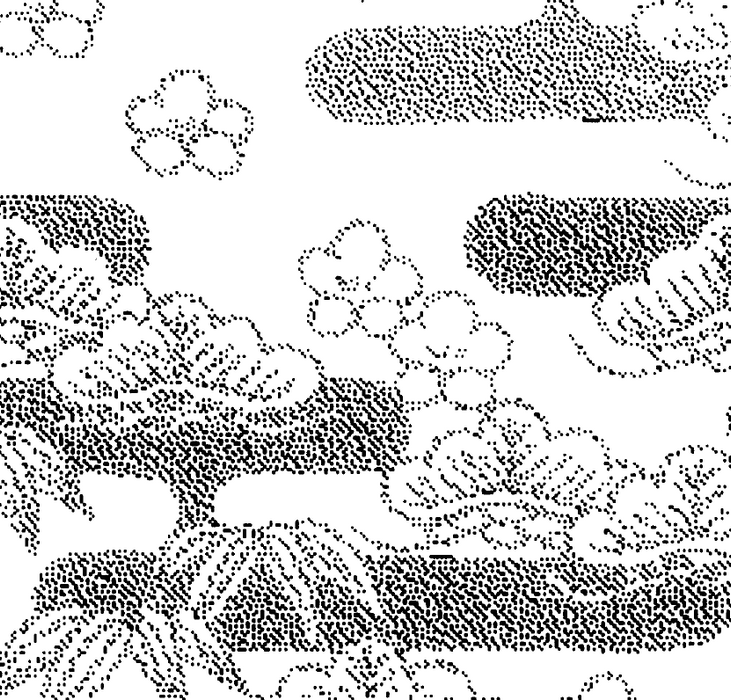 DELETER Jr. Screentone - 182 x 253mm - JR-513 (Plants Pattern)
