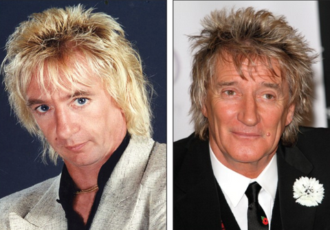 rod stewart celebrity impersonator