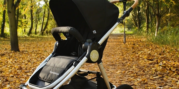 Era Stroller Review - Pushchair Expert