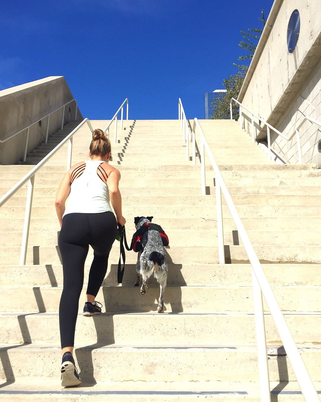 Running stairs with fur baby