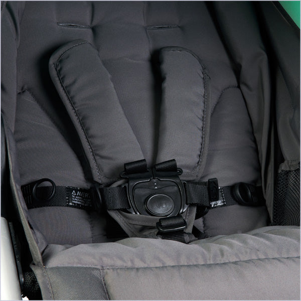 2019 Bumbleride Speed 5pt safety harness