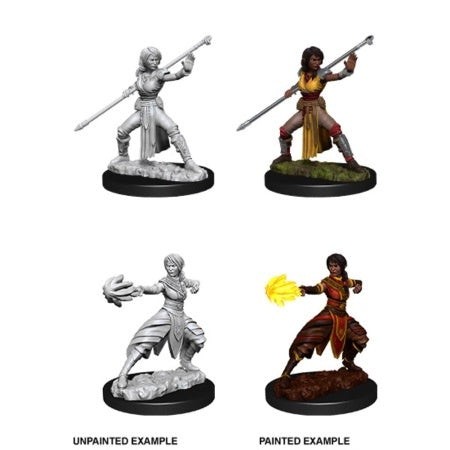 Nolzur Mini: W10 Female Half-Elf Monk [WZK73839]