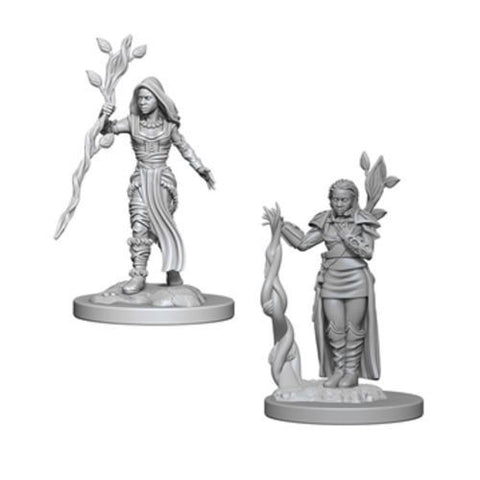 Nolzur Mini: W2 Human Female Druid [WZK72640]