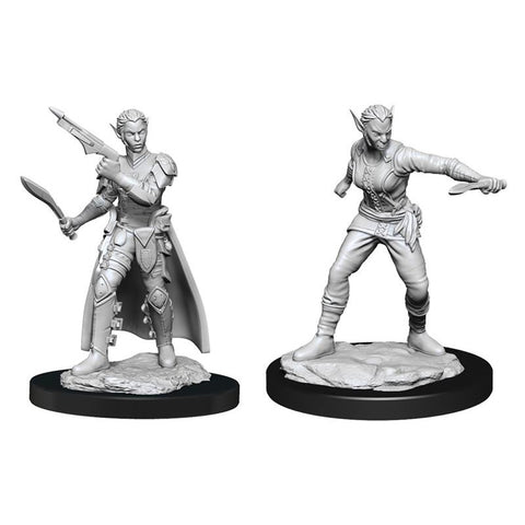 D&D: Nolzur's: Shifter Rogue Female W13 [WZK90148]
