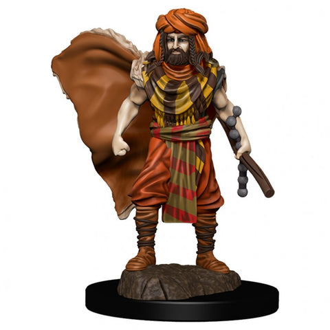 D&D: Icons of the Realm: Premium: W4 Human Druid Male [WZK93031]