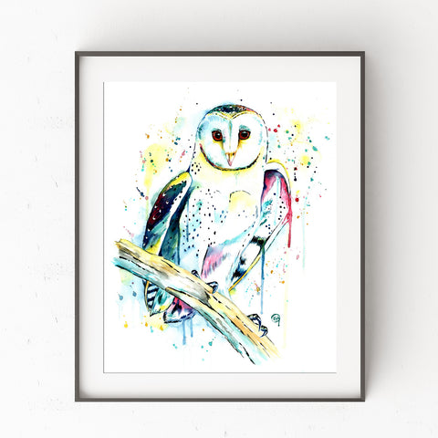 Barn Owl Colorful Watercolor Painting