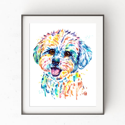 Bichon Frise Art by Whitehouse Art | Bichon Frise Gift, Havanese, Veterinarian Gift, Wall Art, Prints, Watercolor Painting