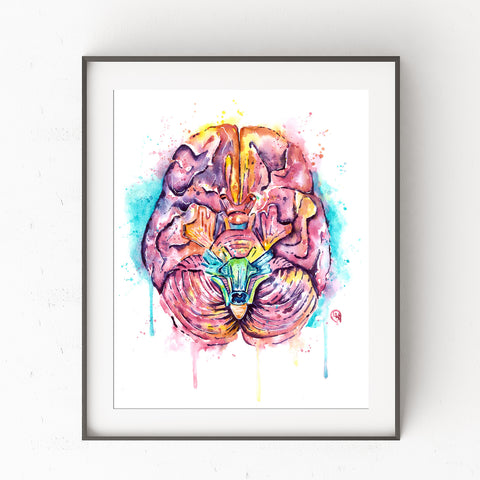 Human Brain Watercolor Painting Art Print