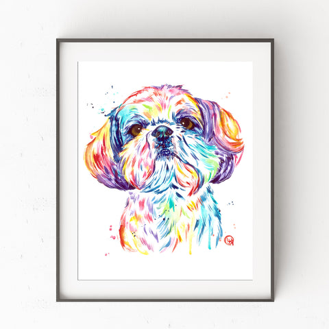 Shih Tzu Watercolor Painting by Whitehouse Art