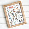 Canadian Wildlife Alphabet - Animal ABCs