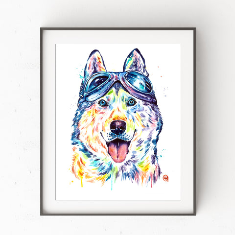 Husky wearing aviator glasses, watercolor painting art print