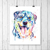 Rottweiler Colorful Pet Portrait Watercolor Painting