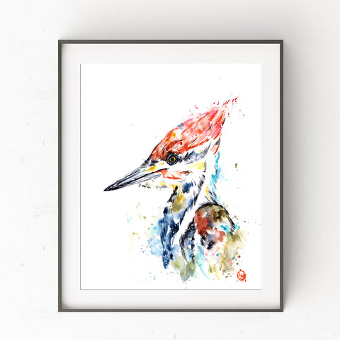 Woodpecker Colorful Watercolor Painting