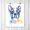Boston Terrier Colorful Watercolor Pet Portrait Painting