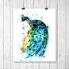 Peacock Colorful Watercolor Painting