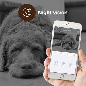 Clever Dog WiFi Pet Monitor with Motion Detection Camera