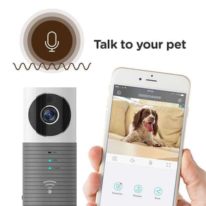 Clever Dog WiFi Pet Monitor with Camera