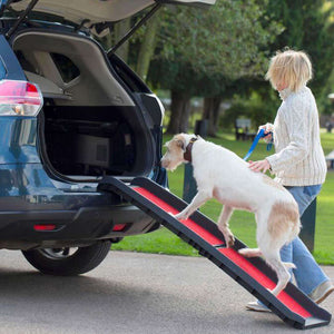 Henry Wag Lightweight Folding Pet Dog Ramp