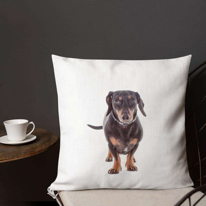Dachshund Premium Pillow